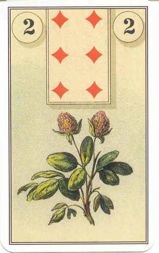 frenchcartomancy_02_clover